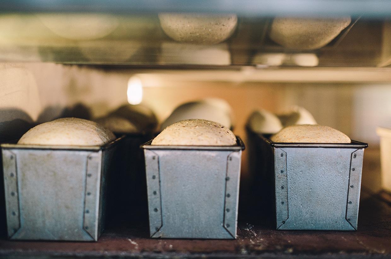 How to make yeast